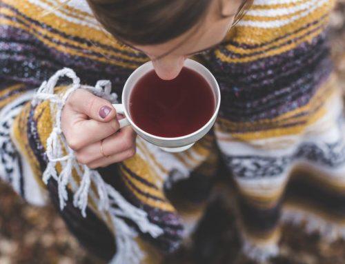 Rooibos : le thé rouge d'Afrique du Sud qui n'en est pas un !